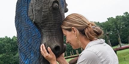 Felújítják a Mohácsi Nemzeti Emlékhely kopjafáit, új tanösvényt is kialakítottak