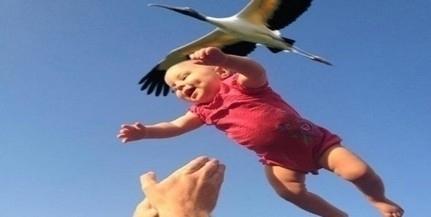 Anyakönyvi hírek: Isten hozott benneteket!