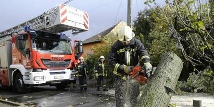 Mohácsra is lecsapott a vihar, a Kórház utcában kocsira dőlt egy kettétört fa ága