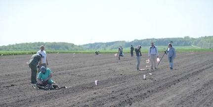 Megtalálták Majs határában a mohácsi csata által érintett település maradványait