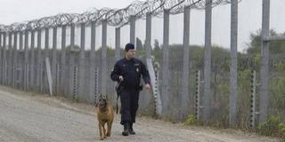 Tizenhét migránst fogtak a határvédők Homorúdon