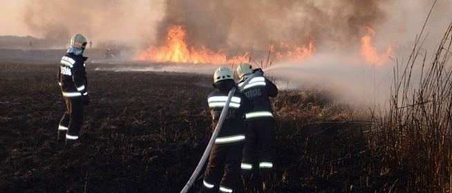 Lángoltak a Riha-tó nádasai, a fűzerdők elérése előtt sikerült megfékezni a tüzet