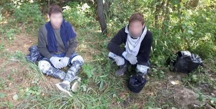 Migránsokat tartóztattak fel Kölked térségében