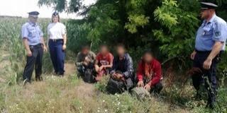 Bóly térségében tartóztattak fel négy külföldit a rendőrök