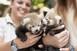 Vörös macskamedveikrek születtek a Nyíregyházi Állatparkban
