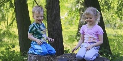 Tízmillió fa Magyarországon: Mohácson szerdán ültetik el az első csemetét
