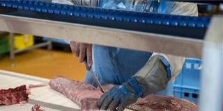 Prémium minőségű húst is előállít már a mohácsi vágóhíd - Hatnapos munkahét jöhet