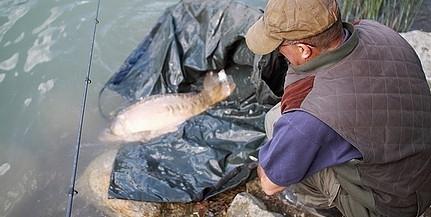 Horgászni, sportolni ezen a hétvégén is lehet a mohácsi Duna-parton