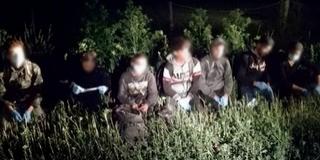 Hetet egy csapásra: Kölkednél is fogtak migránsokat éjszaka a határvédők