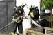 Mielőtt jön a bünti: fórum a tűzvédelmi szabályokról
