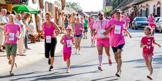Rozé Fesztivált és jelmezes futást rendeznek Villányban