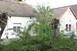 Gallyra vágta a fákat az áramszolgáltató megbízottja, kiakadtak a lánycsókiak
