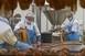 Már több mint hétszázan dolgoznak a 75 százalékos kapacitással működő mohácsi vágóhídon