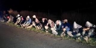 Két csoportban tizenhét migránst fogtak a határvédők Bóly és Nagynyárád közelében