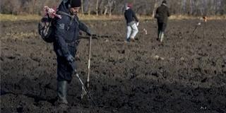 Ismét fémkeresőkkel kutatják át a mohácsi csata lehetséges helyszínét Majs határában