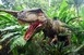 Saját sikerességük lehetett a dinoszauruszok veszte