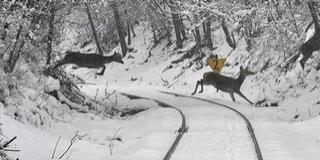 Országszerte lelassult a közlekedés a havazás miatt