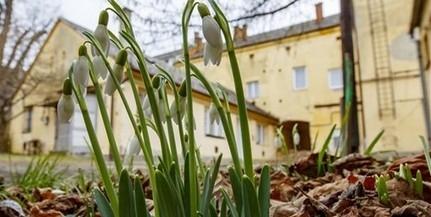 Igazán tavasziasnak ígérkezik a hétvége időjárása