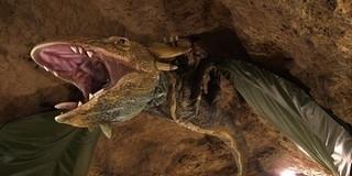 Hamarosan ismét látogatható Tettyei Mésztufa-barlang