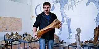 A feltárása után több mint 90 évvel láthatja először a közönség a pécsi mamutot