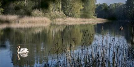 Ismét van elegendő víz az Ó-Dráva holtágában