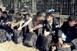 Naná, hogy húsvétkor is: 24 migránst tartóztattak fel