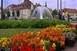 Még várják a nevezéseket a Virágos Magyarország versenyre