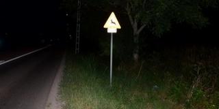 Csak óvatosan a baranyai utakon, jöhetnek a vadak