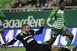 Nem bírt a Ferencváros a mezőkövesdi legényekkel