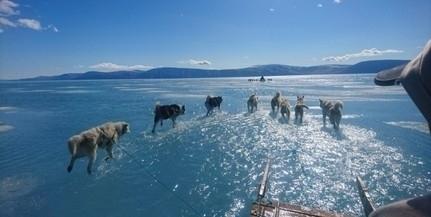 Halálos vírus terjedéséhez vezethet a vízi világban a jégolvadás