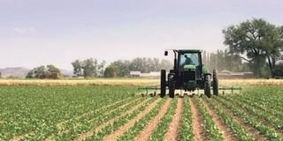Mezőgazdasági összeírás kezdődik az országban