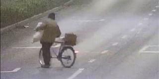 Kutyát lopott egy családi ház udvaráról egy férfi Pécsett