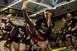 Kilenc magyar arany a kick-box Európa-bajnokságon