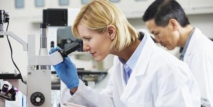 Ritka betegségeket vizsgáló kutatási program indult