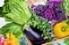 Napi egy adag zöldsaláta fiatalon tarthatja az agyat
