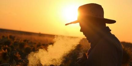 Hatékony a dohányzási tilalom bevezetése